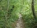Hordle, footpath - geograph.org.uk - 1475820.jpg