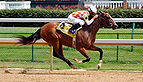 Horseracing Churchill Downs edit.jpg