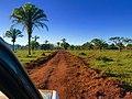 Humedales de tierra de Guarayos.jpg