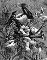 Hummingbird Family Portrait.jpg