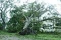 Hurricane Gustav hitting a Louisiana National Guard post DVIDS112210.jpg