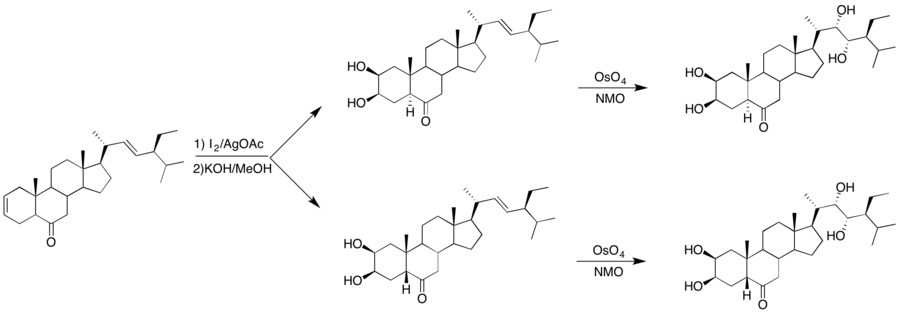 Reactions showcasing dihydroxylation steps.