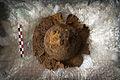 INRAP présentation fouilles Obernai 6000 ans occupation 24 octobre 2013 25.jpg