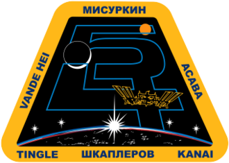 Scott D. Tingle - Image: ISS Expedition 54 Patch