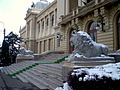 "Iaşi , ""Alexandru Ioan Cuza"" University , detail 1.JPG"