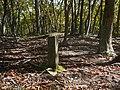 Ibarakawacho, Higashiomi, Shiga Prefecture 527-0216, Japan - panoramio (36).jpg