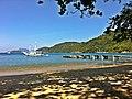 Ilha Grande - Lopes Mendes - panoramio (29).jpg