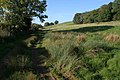 In the River Devon valley - geograph.org.uk - 591022.jpg