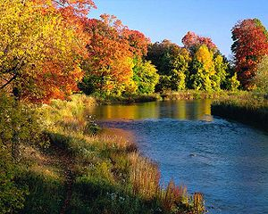 Indian Summer (Wikipedia)