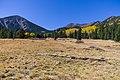 Inner Basin Trail No. 29 (30074956971).jpg
