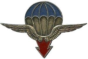 25th Airborne Division (France) - Image: Insigne 25° DAP