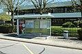 Institut culturel franco-japonais - École japonaise de Paris à Montigny-le-Bretonneux le 19 avril 2015 - 16.jpg