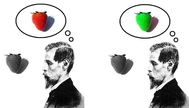 File:Inverted qualia of colour strawberry.jpg