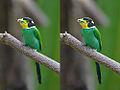 JPEG compression Example.jpg