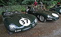 Jaguar D-Types - Flickr - exfordy.jpg
