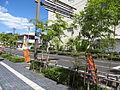 Japan National Route 432 near Takehara city office.JPG
