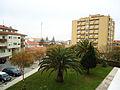 Jardim - Espinho (5347282560).jpg