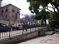 Jardim de São Pedro de Alcântara (14423416133).jpg
