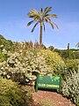 Jardinbotanique18.JPG