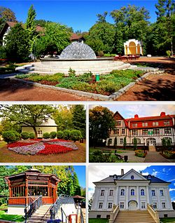 Top: Spa Park, Middle left: Rehabilitation Centre, Middle right: Spa House, Bottom left: Japanese bridge and 'Dąbrówka' palace, Bottom right: University Library.