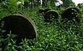 Jewish cemetery Ozarow 5.jpg