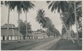 KITLV - 12589 - Kleingrothe, C.J. - Medan - Klapper Avenue with coolie housing near Batangkuwis in Deli - 1903.tif