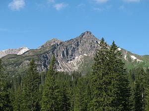 Klettersteig Kanzelwand : Zweiländer klettersteig kanzelwand