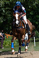 Karen O'Connor Mr Medicott cross country London 2012.jpg