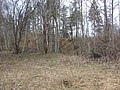 Kastrānes pilskalns, Suntažu pagasts, Ogres novads, Latvia - panoramio - M.Strīķis (4).jpg