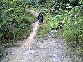 Kepala Gurung, Mentebah, Kapuas Hulu Regency, West Kalimantan, Indonesia - panoramio (7).jpg