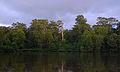 Klias Wetlands 05.jpg