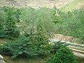 Kohestan park in kermanshah.jpg