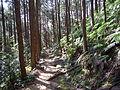 Kumano Kodo Dainichigoe World heritage56.JPG