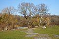 Kurpark Oberlaa 52 - cobblestone bench.jpg