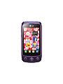 LG Cookie Plus (LG GS500).jpg
