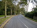 Lady Edith's Drive - geograph.org.uk - 266381.jpg