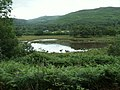Lake, Ynys Hir - geograph.org.uk - 23499.jpg