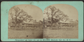 Lake House, Pleasant Lake, Sullivan Co. N.Y, from Robert N. Dennis collection of stereoscopic views.png