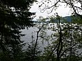 Lake Vyrnwy - geograph.org.uk - 1322785.jpg