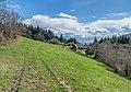 Landscape of Segala de Conques 02.jpg