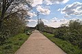 Landschaftsschutzgebiet Altarme der Saar 01.jpg