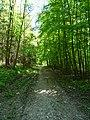 Landschaftsschutzgebiet Gestorfer Lößhügel (12).JPG