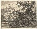 Landschap met boom met blootgelegde wortels, RP-P-OB-12.488.jpg