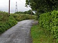 Lane near Friars Ball Farm - geograph.org.uk - 1433234.jpg