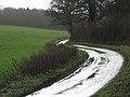 Lane near Hare Warren - geograph.org.uk - 302030.jpg