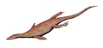 Nothosaur - Image: Lariosaurus BW
