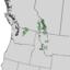 Larix lyallii range map 4.png