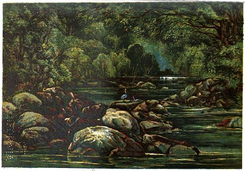 Last of the Tasmanians Plate 3 - The Corra Linn of Northern Tasmania.jpg