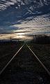 Last track view (15598828508).jpg
