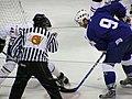 Latvia VS Slovenia at the IIHF World Hockey Championship 2008 - Tomaž Razingar (2).jpg